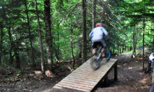 bikepark en vielha - Larider bike Aran