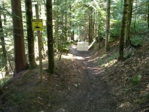 bikepark-vielha-larider-bike-aran-descenso