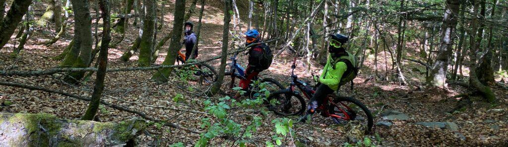 Bajada Entecada hayedo grupo - Valle de Aran - ruta guiada bicicletas electricas